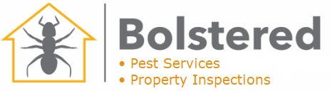 Pest Control Services Charlestown Newcastle